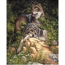 Dpw91416 - Paintsworks Paint by Numbers - Wolves, Wild & Free