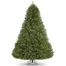 Winter Workshop - 6ft Apex Pine Artificial Christmas Tree with 1517 Tips