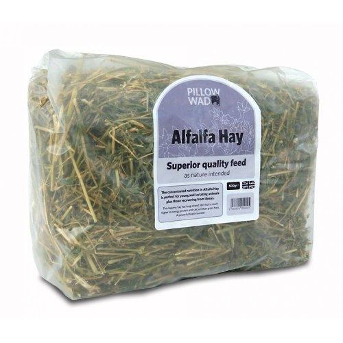 Pillow Wad Alfalfa Hay 500g