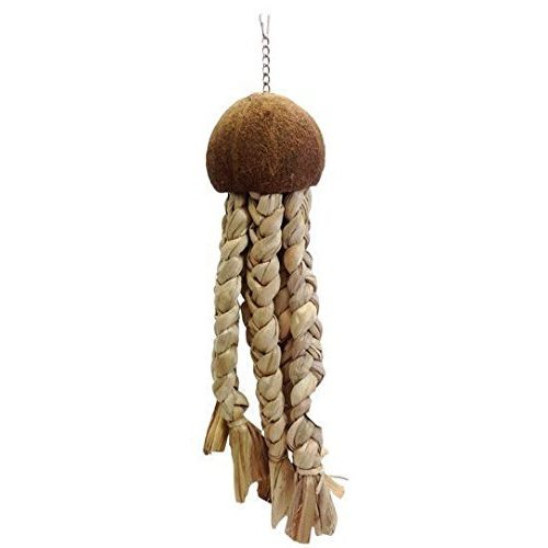 """A&E CAGE COMPANY HB46605 Java Wood Jelly Fish Assorted Bird Toy, 22 by 535"""""""
