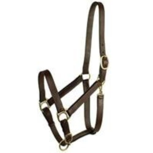GATSBY LEATHER COMPANY 203S/4 Stable Halter with Snap