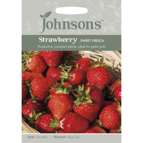 Johnsons Seeds - Pictorial Pack - Vegetable - Strawberry Sweet Fresca - 20 Seeds