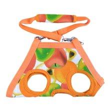 Portable Soft Pet Carrier Shoulder Bag For Teddy, Orange Fruits, XL, Bust 40CM
