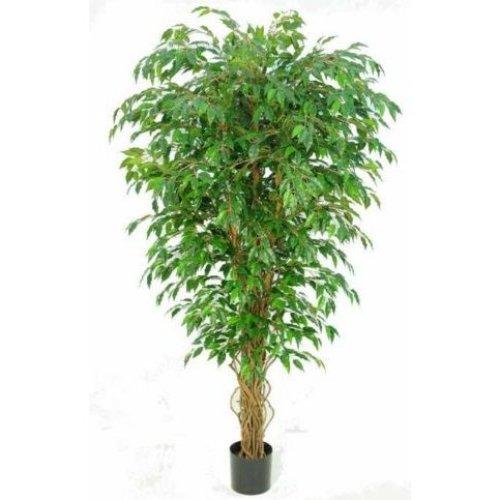 Artificial Silk Hawaiian Ficus Tree IFR