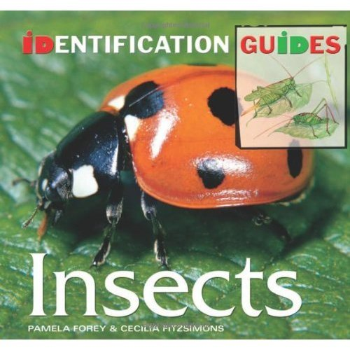 Insects: Identification Guide (Identification Guides)