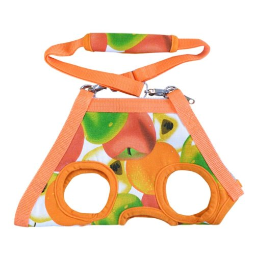 Portable Soft Pet Carrier Shoulder Bag For Teddy, Orange Fruits, XL, Bust 40CM