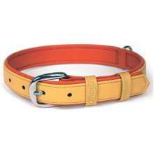 Flexi Summertime 3 Collar Orange Large