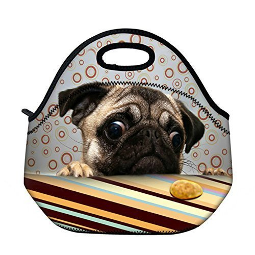 Newplenty Cute Pug Neoprene Reusable Insulated Lunch Tote Bag School Picnic  Thermal Carrying Gourmet Lunchbox Container Organizer Storage Cooler