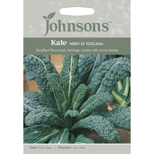 Johnsons Seeds - Pictorial Pack - Vegetable - Kale Nero di Toscana - 400 Seeds