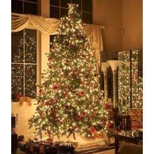 20M 200 LED Fairy String Light  Christmas