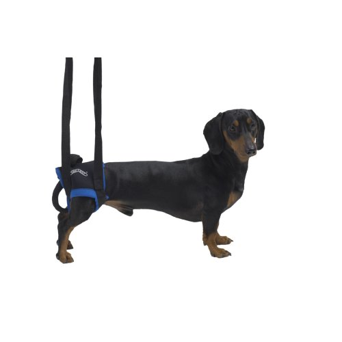 Kruuse Rehab Walkabout Harness Hind Legs Small