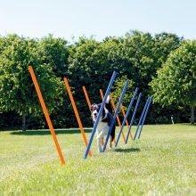 TRIXIE Agility Slalom Poles 12 pcs 115 cm Plastic 3206