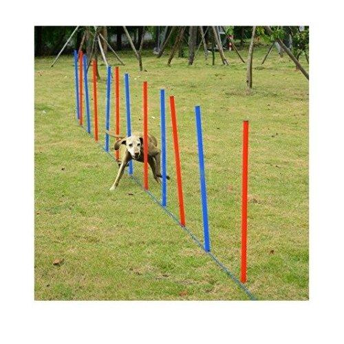 Pawhut Pet Agility Training Equipment Dog Play Run Jump Training Set Adjustable (poles)