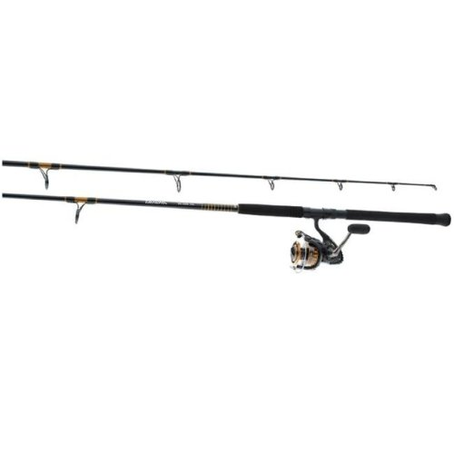 Daiwa 4014902 9 ft. BG Pre-Mounted Saltwater Spinning Combo Offshore