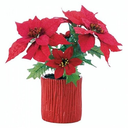 Christmas Collection 10018125 Poinsettia in Wood-Look Red Base - 15.5 in.