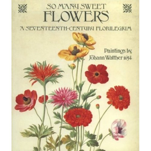 So Many Sweet Flowers: A Seventeenth-century Florilegium - Paintings by Johann Walther, 1654