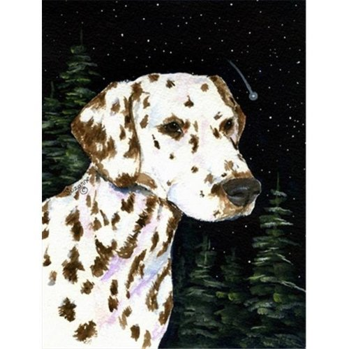 Starry Night Dalmatian Canvas Flag - House Size, 28 x 40 in.